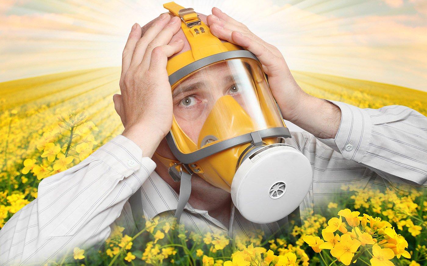 поллиноз перекрестная аллергия
