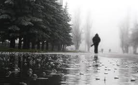 дощитиме