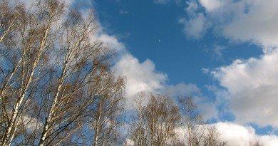 погода Днепропетровск