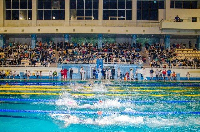 чемпионат по плаванью