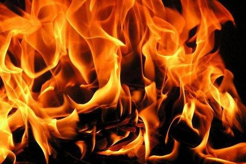 сожгли