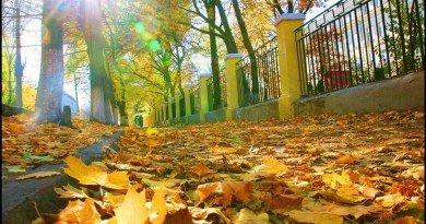 Днепр_осень