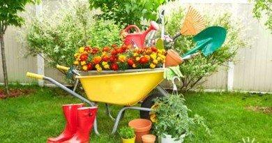 сад_огород