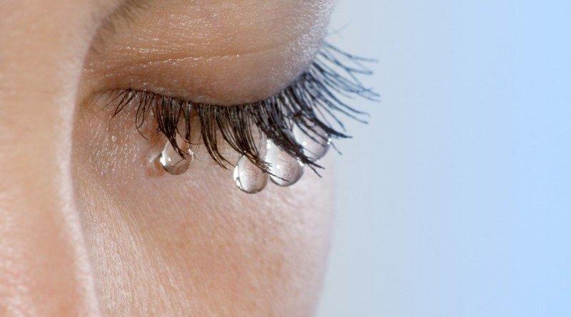 плачемо