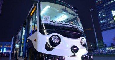 автобус-панда