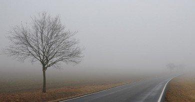 тумане