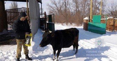 корова Зорька