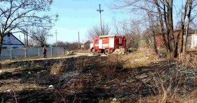 пожежа_трава