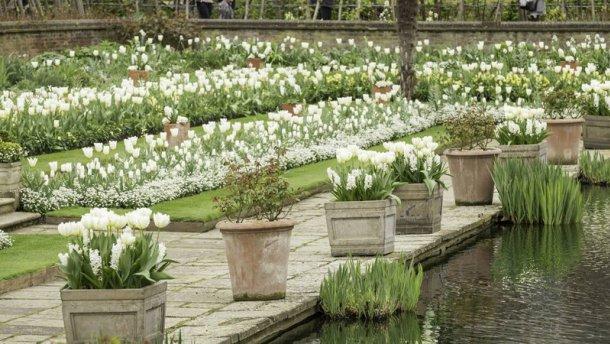 сад принцеси Діани