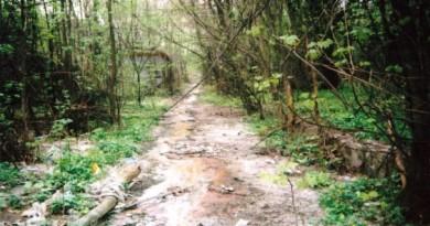 парк Днепра