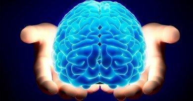 головной мозг_ IQ