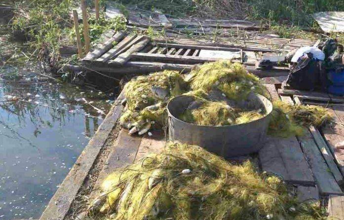 На Дніпропетровщині затримали бракон'єра 2