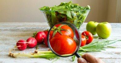продукти з ГМО