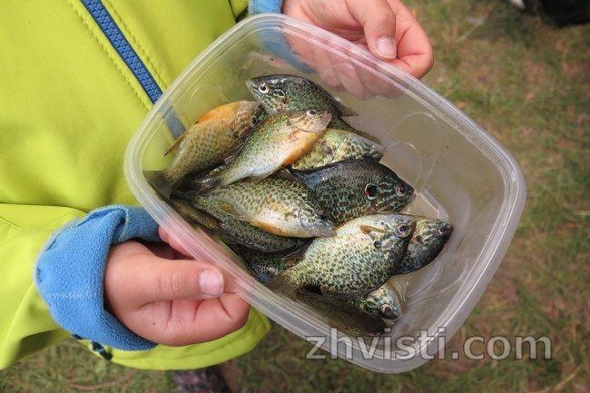 риболовля_Жовті Води