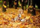 алергія восени