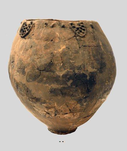 Грузия, вино, виноделие, искусство, выдержка, 8000 лет, древнее вино, ученые, открытие