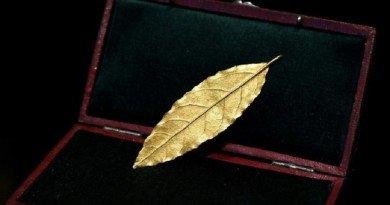 золотой лавровый лист