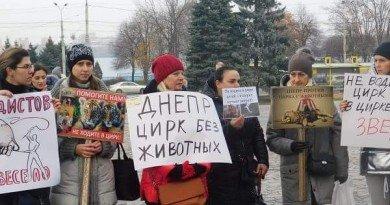 зоозащитники_митинг