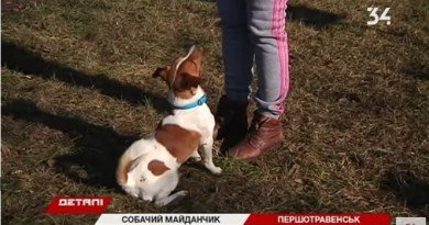 тренажеры для собак _Першотравенск