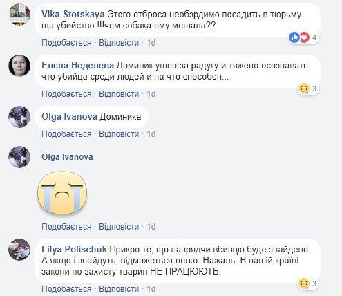 Скрин_Доминик