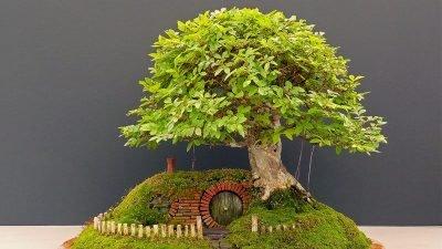 Британський майстер відтворив казковий світ «Володаря перснів» (фото)