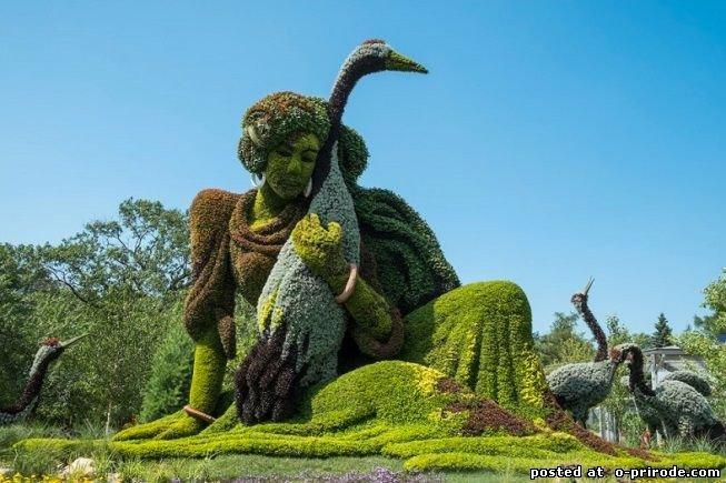 ботанический сад Монреаля