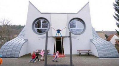 школа-кот