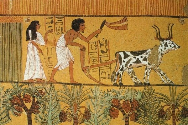 єгиптяни