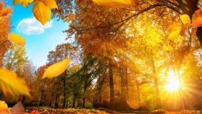 День осеннего равноденствия 2018 года: дата и время