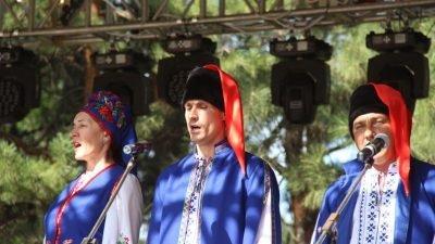 Сергей Шевцов на сцене