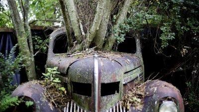 Как выглядит самая старая автосвалка-музей в мире (Фото)