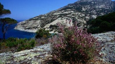 остров Монтекристо