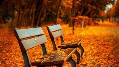 Погода у Дніпрі на 20 жовтня: прогноз синоптиків.