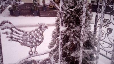 Днепр накрыл снегопад (Фото)