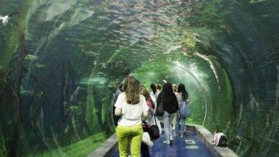 підводний готель