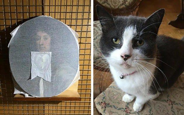 кошка_картина