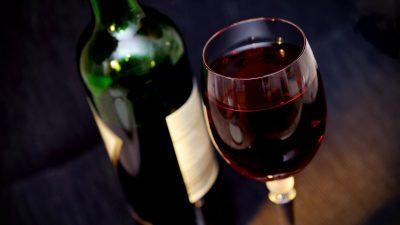 Вино_Мозг
