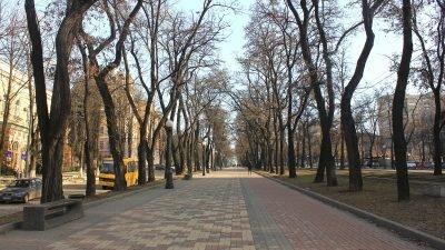 У Дніпрі ще одна вулиця може стати пішохідною