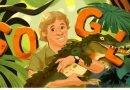 Google_Стив Ирвин