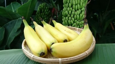 банан со съедобной кожурой