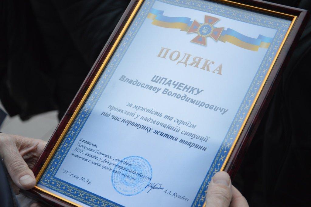 порятунок_собака_Дніпро