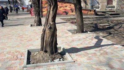 пешеходная зона_улица Бердянская_Днепр