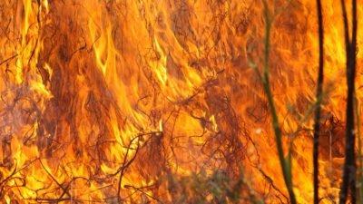 жара пожар