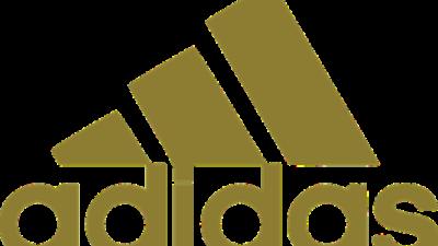 Суд отказал Adidas в праве на «три полоски»