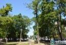 алея -Никополь