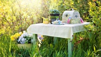 пикник