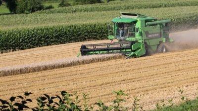 аграрии поле