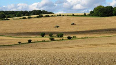 Только 5% собственников хотят продать свою землю после запуска рынка