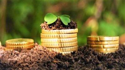 Бюджети об'єднаних громад Дніпропетровщини проаналізували експерти
