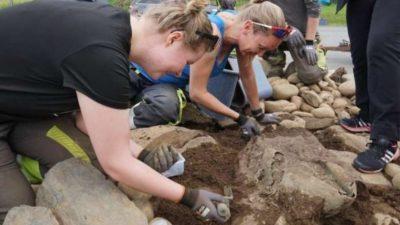 археологи_Норвегия